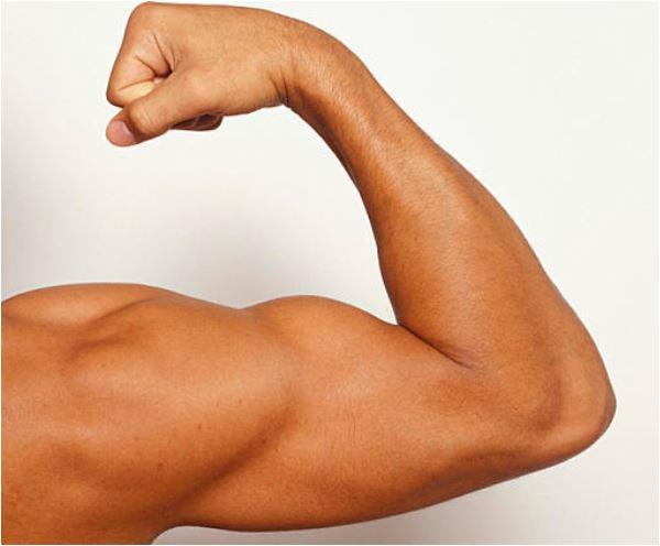 muscles-well-fit-nancy