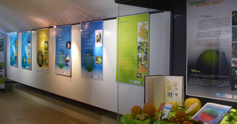 expo-bergamote-gourmande