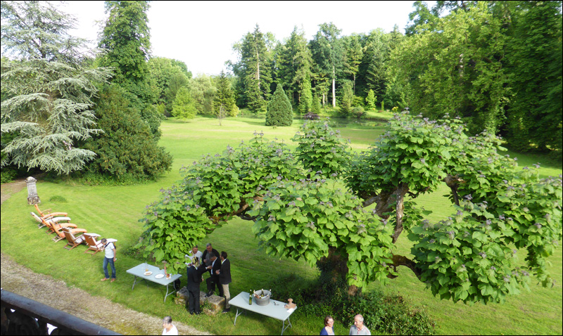 parc du chateau de choloy loevenbruck
