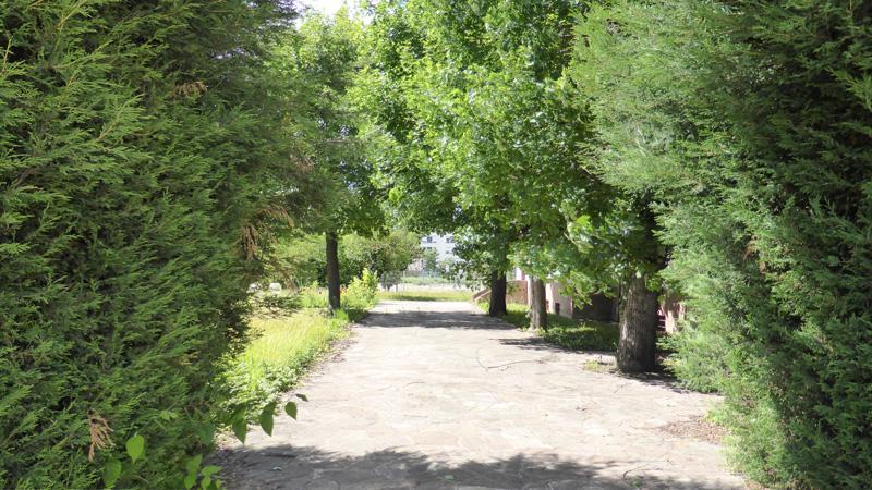jardin-maison-nordon-nancy