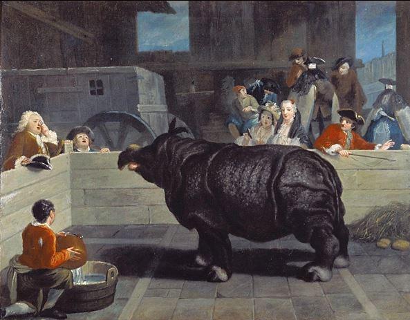 le rhinocéraos de Stanisla Leczinski