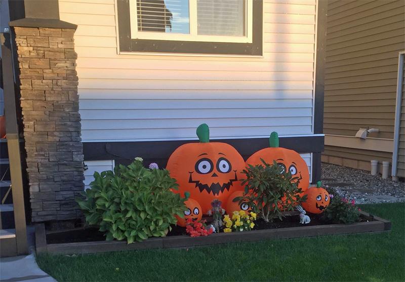 halloween canada potiron courge